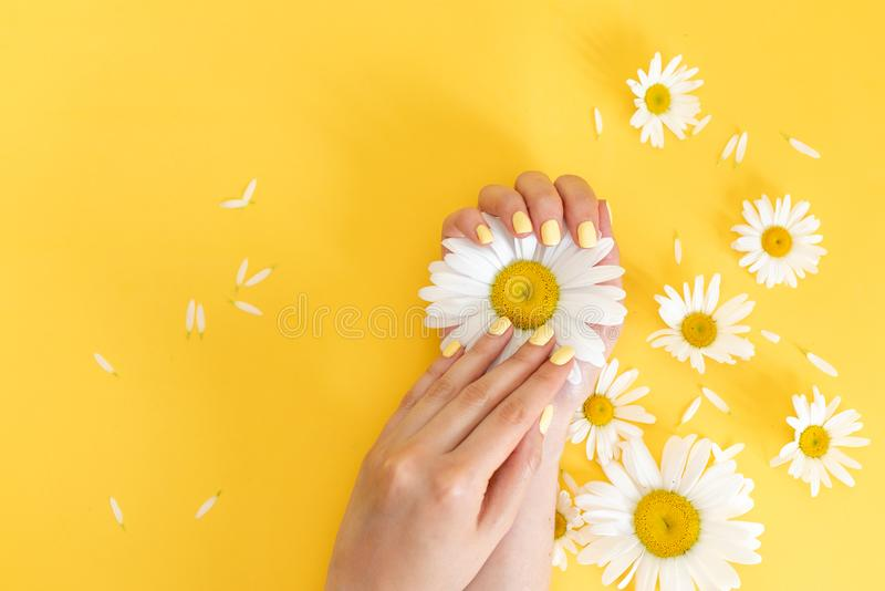 Nails Design. Hands With Bright Yellow Manicure On Violet Background. Close Up Of Female Hands With Trendy Orange Nails On Purple stock photography