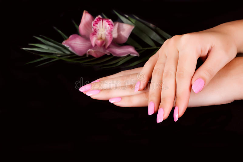 Nails with flower royalty free stock image