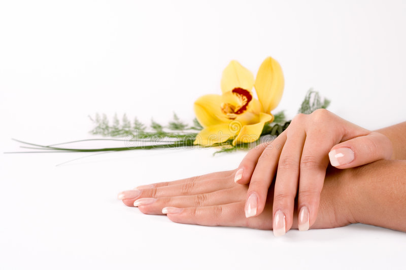 Nails with flower stock photos