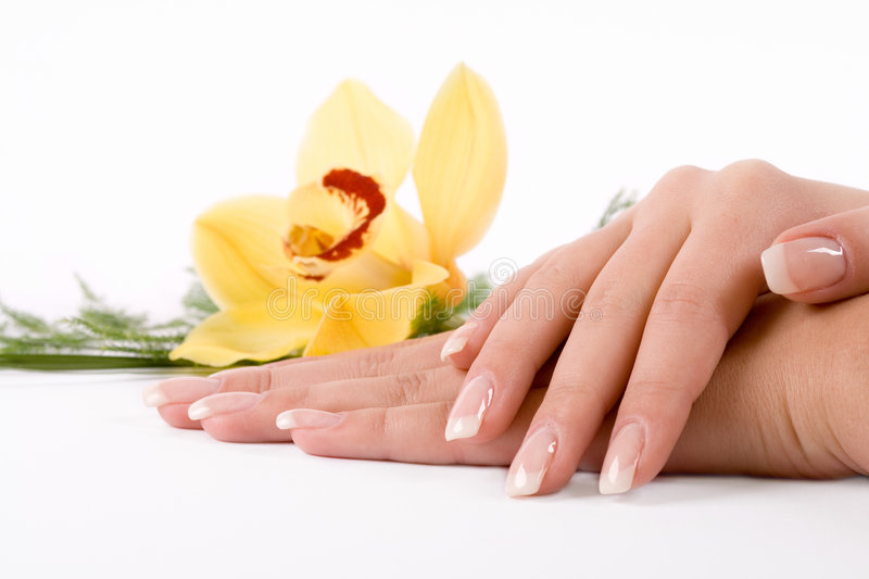 Nails with flower stock images