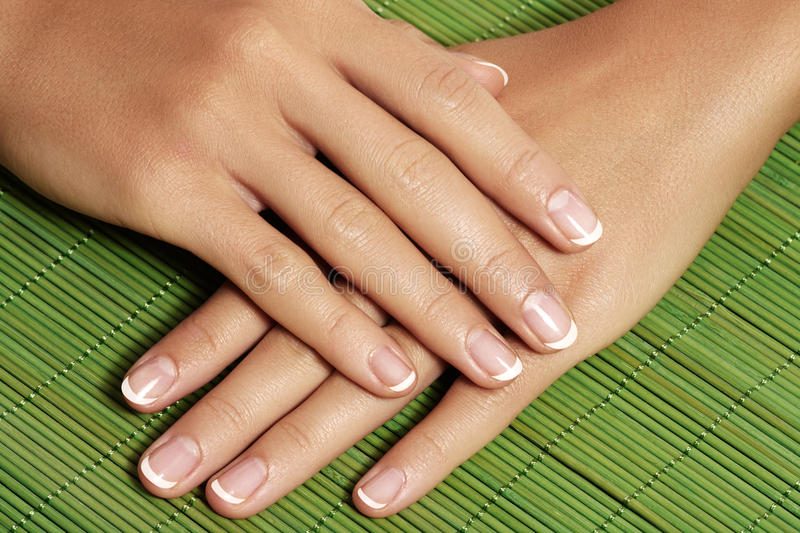 Nails with perfect french manicure. Care for female hands. royalty free stock images
