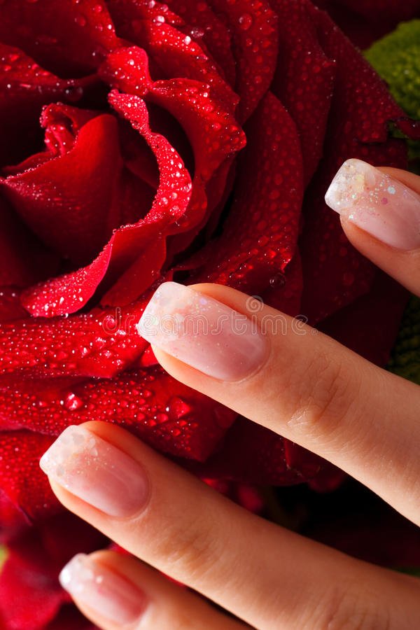 Download Nails and rose stock photo. Image of water, nails, beautiful - 28645362