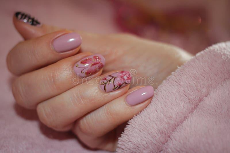 Nails täckte med rosa färgfärg med en modell av sakura och men fotografering för bildbyråer