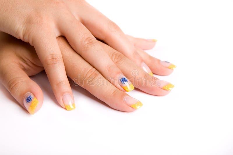 Nails on white royalty free stock image