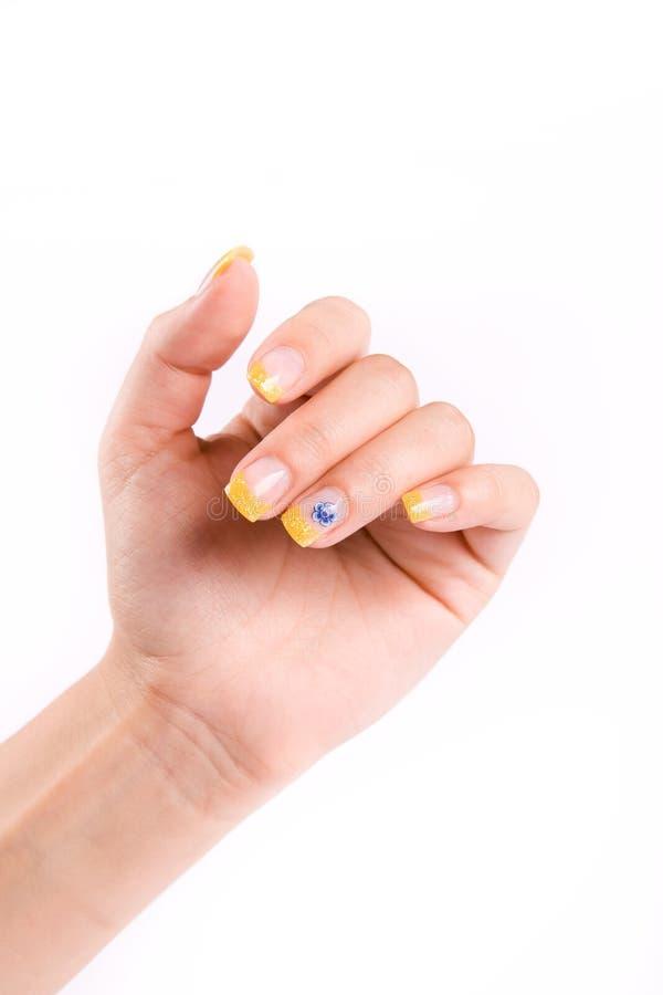 Nails on white stock image
