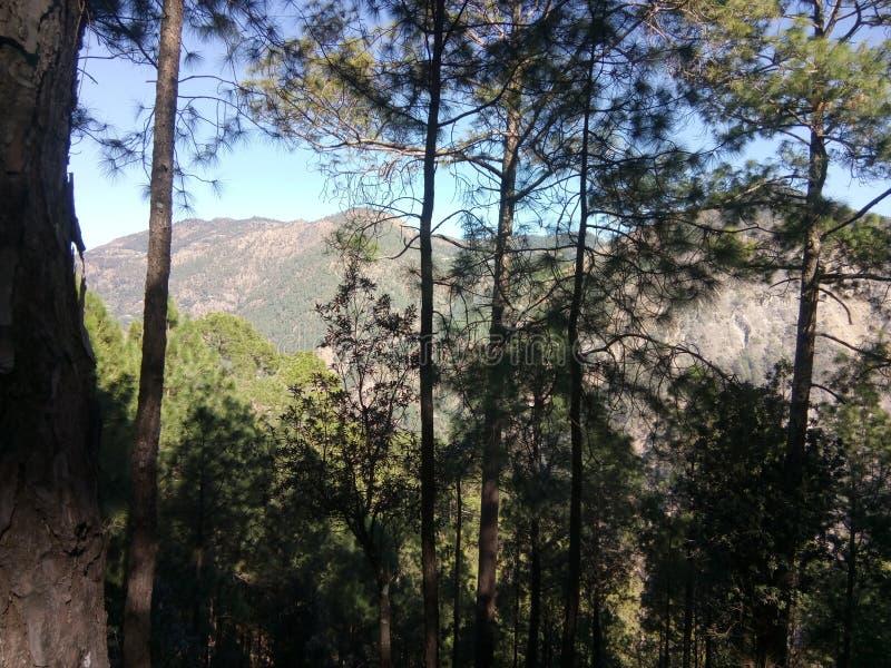 Nainital, Indien stockbild