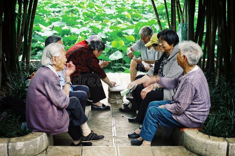 Naipes chinos mayores del hombre y de la mujer y charla en un parque al lado de una pequeña charca fotos de archivo libres de regalías