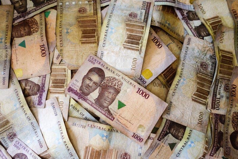 Naira, dinheiro de Nigéria fotografia de stock royalty free