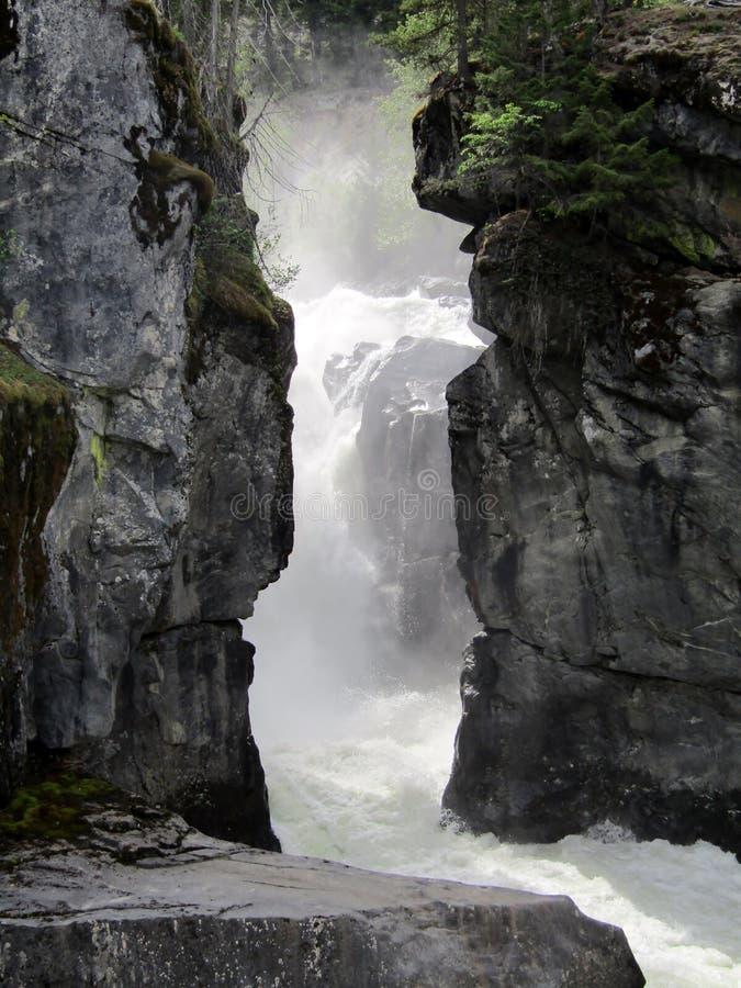 Nairn在Nairn下跌下跌省公园在吹口哨和彭伯顿之间,BC,加拿大 库存图片