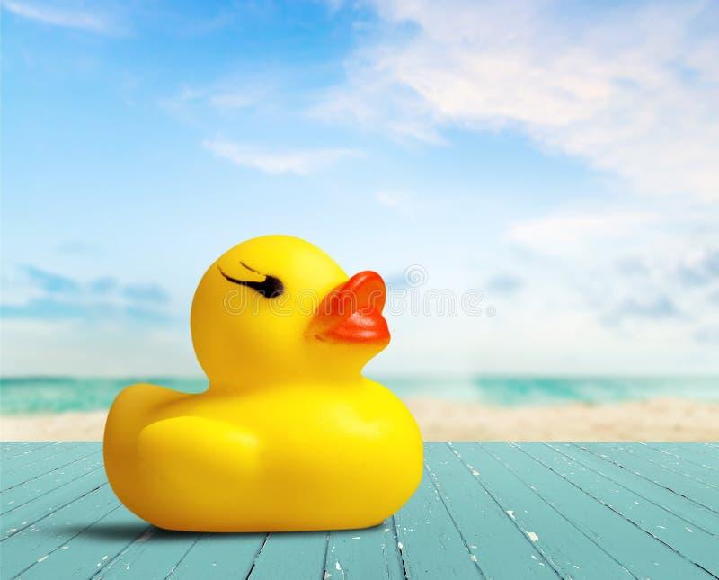 Naissance du canard en caoutchouc image libre de droits