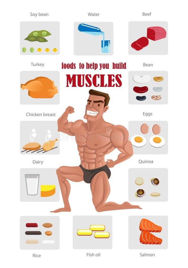 Najlepszy mięśnia jedzenie royalty ilustracja