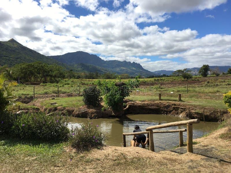 Najpierw Błotnisty basen w Sabeto Borowinowym basenie wokoło Nadi, Fiji obrazy stock