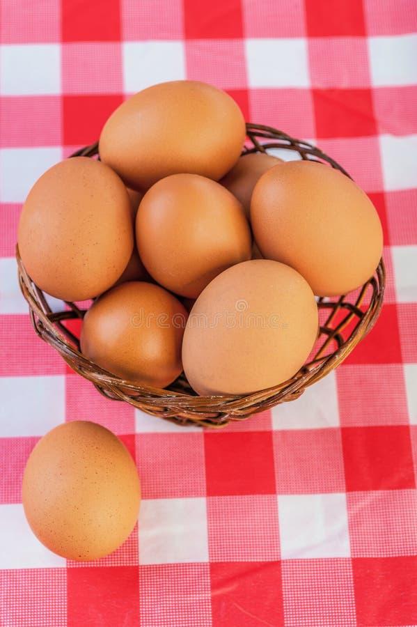 najpierw brązowe jajka skupiają się dwa obrazy royalty free