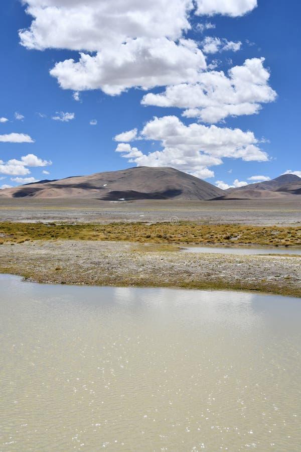 NAK fuertemente salino de Ruldan del lago cerca del pueblo de Yakra en Tíbet, China fotografía de archivo