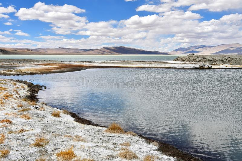 NAK fuertemente salino de Ruldan del lago cerca del pueblo de Yakra en Tíbet en el tiempo nublado, China foto de archivo libre de regalías