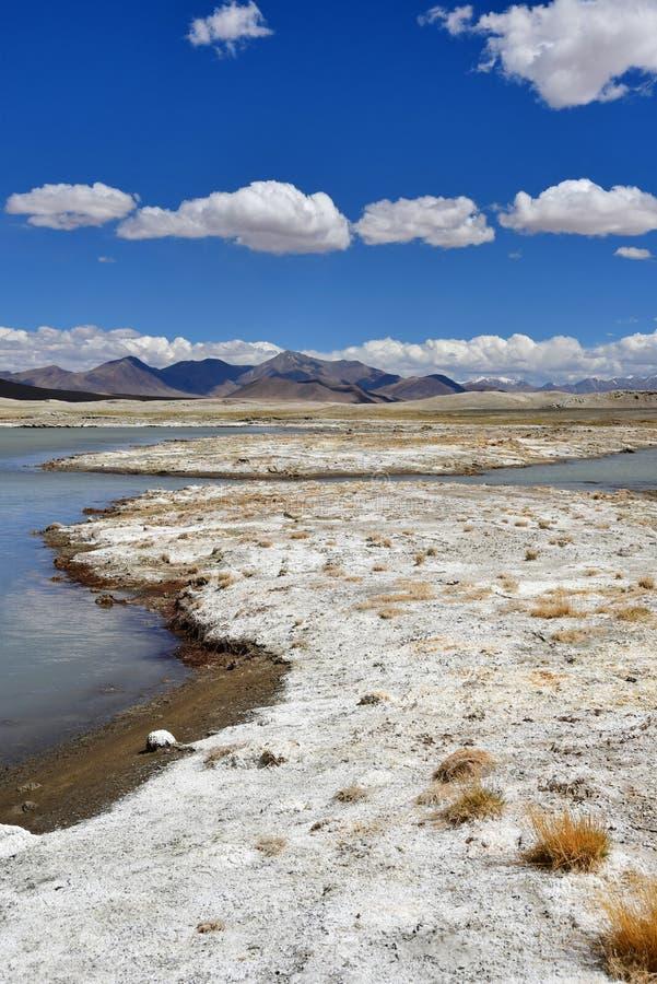 NAK fuertemente salino de Ruldan del lago cerca del pueblo de Yakra en Tíbet en el tiempo soleado, China imágenes de archivo libres de regalías