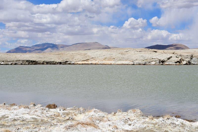 NAK fuertemente salino de Ruldan del lago cerca del pueblo de Yakra en Tíbet en el tiempo soleado, China imagen de archivo