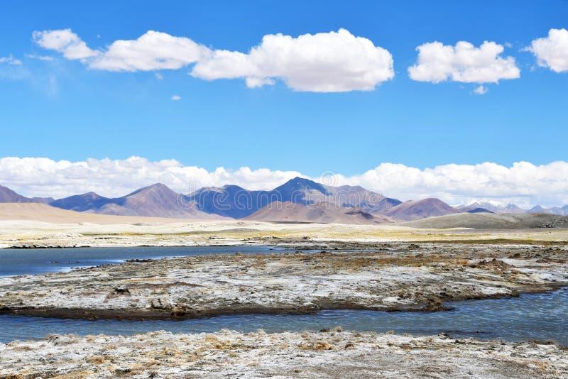 NAK fuertemente salino de Ruldan del lago cerca del pueblo de Yakra en Tíbet en el tiempo soleado, China foto de archivo