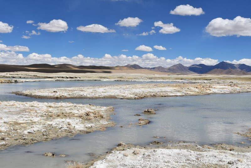 NAK fuertemente salino de Ruldan del lago cerca del pueblo de Yakra en T?bet, China imagen de archivo