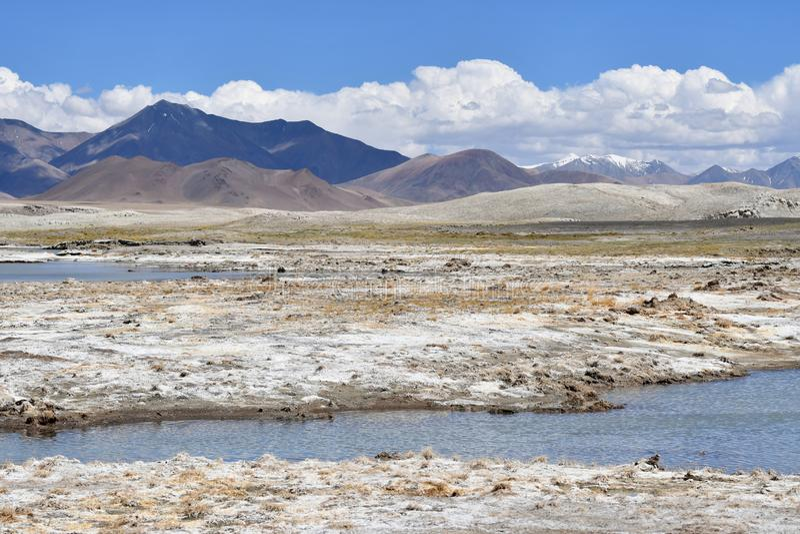 NAK fuertemente salino de Ruldan del lago cerca del pueblo de Yakra en T?bet, China foto de archivo