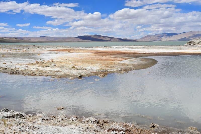 NAK fuertemente salino de Ruldan del lago en T?bet, China foto de archivo