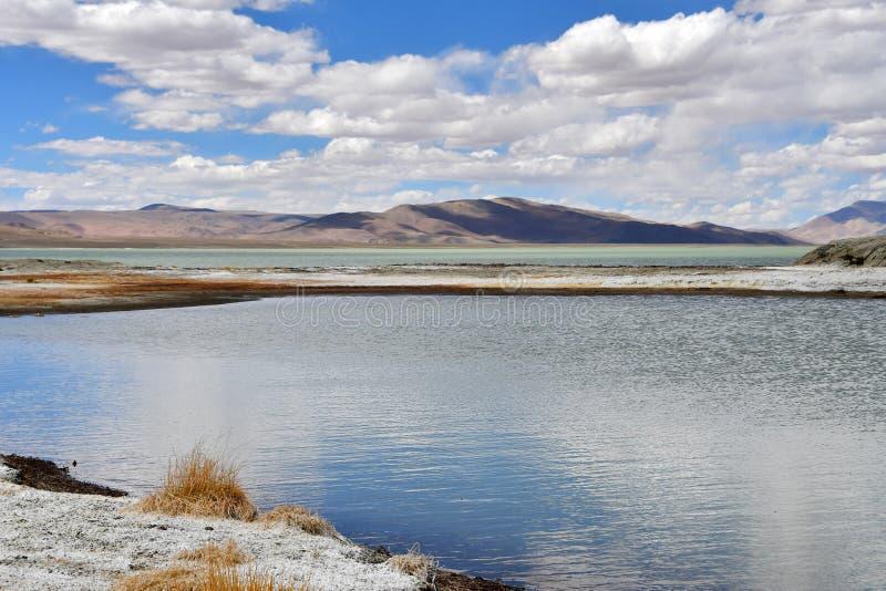 NAK fuertemente salino de Ruldan del lago en T?bet, China fotos de archivo libres de regalías