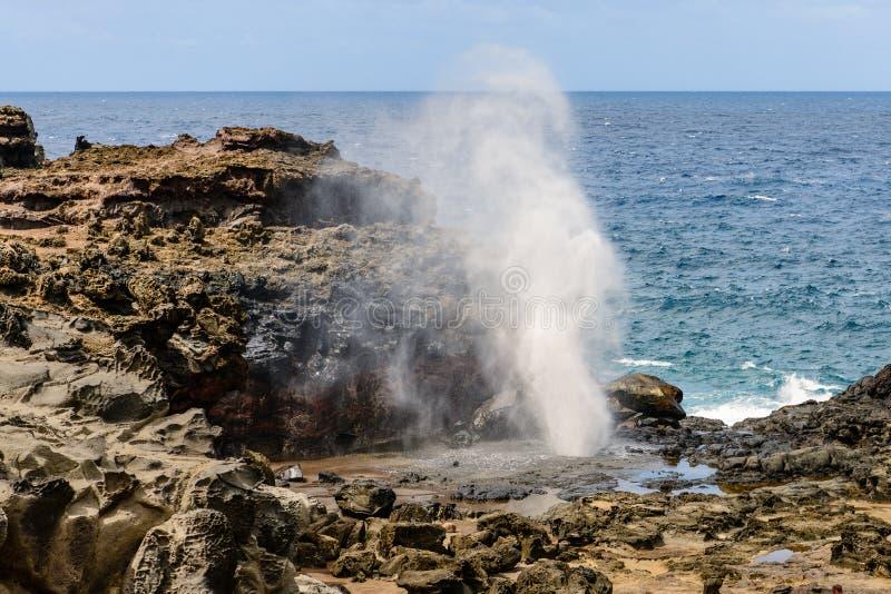 Nakalele通风孔在毛伊,夏威夷喷发 免版税库存图片