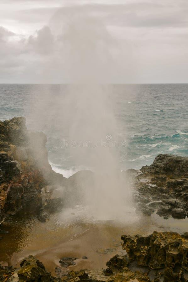 Nakalele blåshål, Maui arkivbild