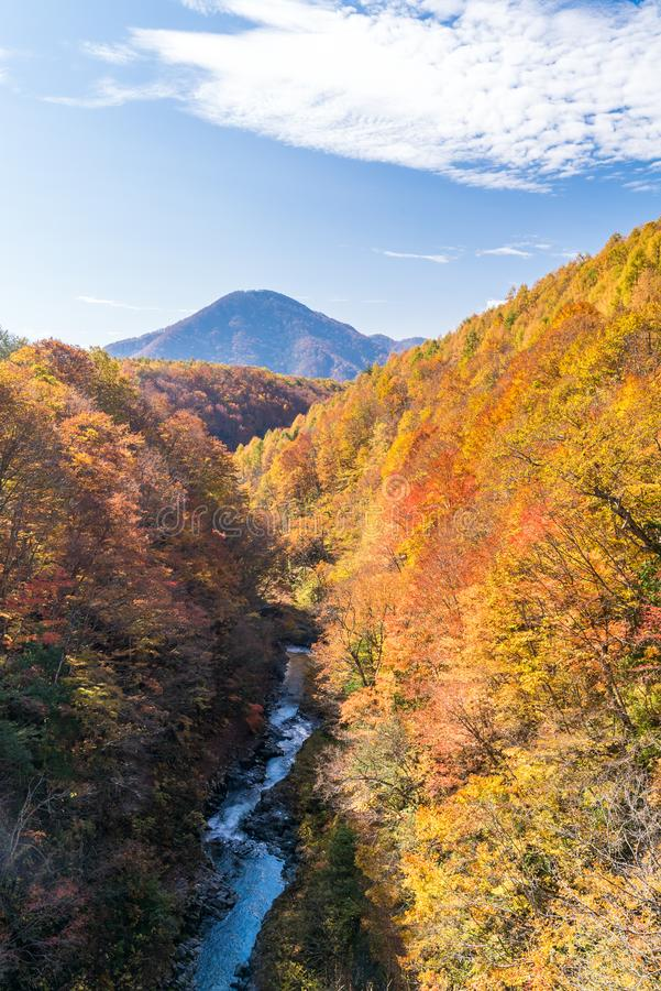 Nakatsugawa Fukushima jesień zdjęcie royalty free