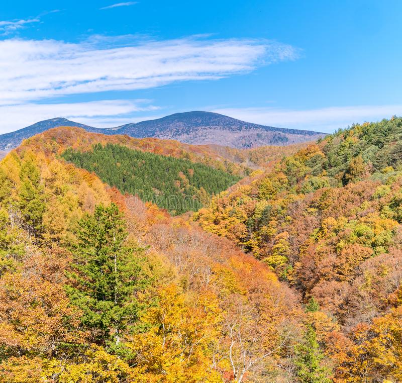 Nakatsugawa Fukushima jesień zdjęcia stock