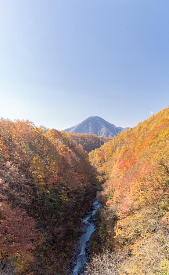 Nakatsugawa Fukushima jesień obrazy royalty free
