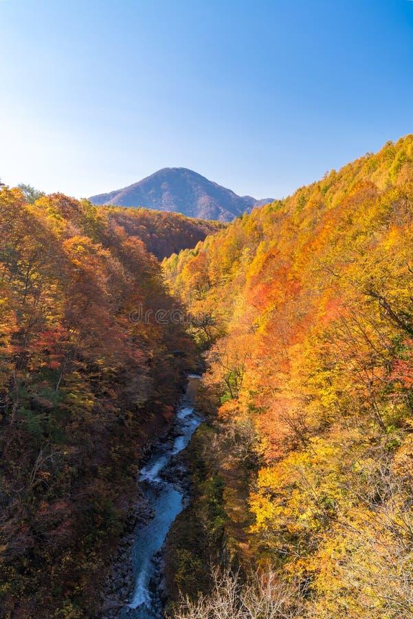 Nakatsugawa Fukushima jesie? zdjęcia royalty free