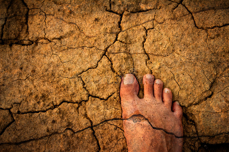 Naked Feet on dry Soil. Barefoot on dry land Reflect difficulties. And uncertainty royalty free stock image
