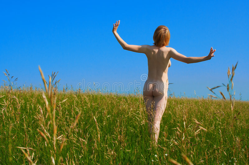 Download Naked girl in field stock photo. Image of attractive, herbage - 984984