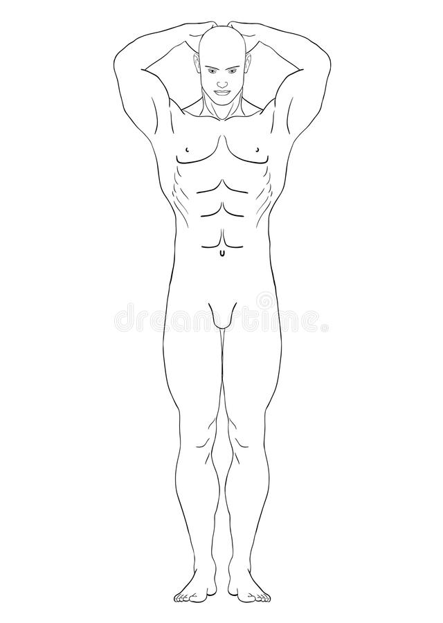 Download Naked Man In The Full-length, Vector Stock Vector - Illustration of profile, model: 23768363