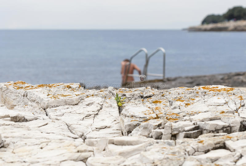 Naked woman bathing in the sea rocky beach with ladder royalty free stock photography
