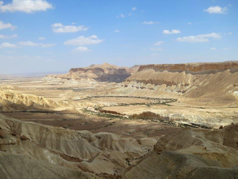 Nakhal Tsin szczelina, wadi Zin, Sde Boker, Izrael obrazy royalty free