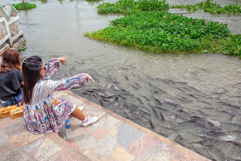 NAKHON PATHOM - 25 ΟΚΤΩΒΡΊΟΥ: Η μη αναγνωρισμένη γυναίκα ταΐζει το ψωμί για να αλιεύσει δίπλα στον ποταμό πηγουνιών Tha σε Nakhon στοκ φωτογραφία