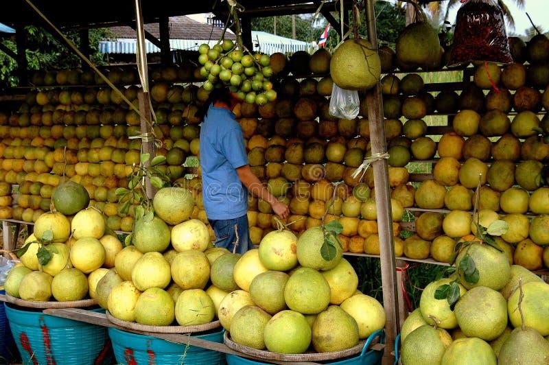Nakhon Pathom, Thailand: Försäljare som säljer Pomelos royaltyfri fotografi