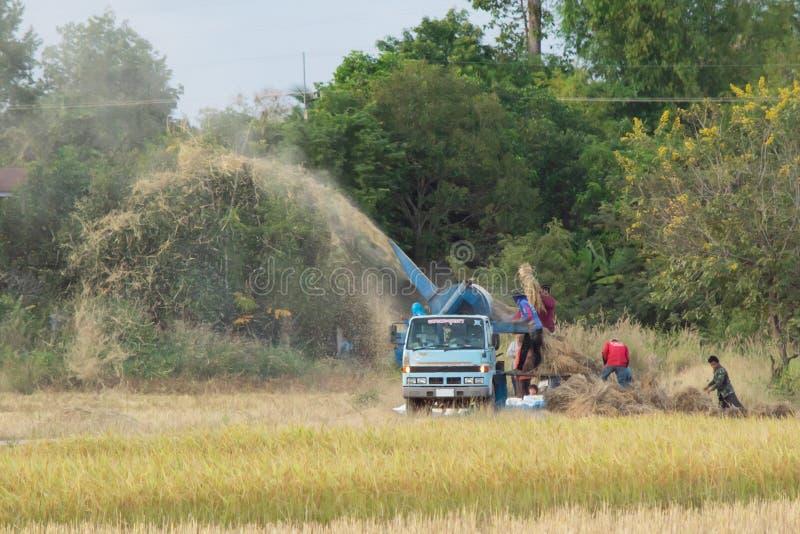 NAKHON PHANOM, THAILAND - NOVEMBER 11, 2018: Bedrijfsmedewerkers die rijst met een dorsmachine op een auto malen stock foto