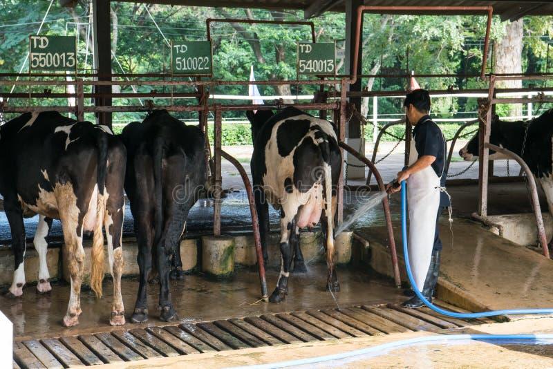 NAKHON RATCHASIMA, THAILAND - December 6, 2014: Landbouwer die t werken royalty-vrije stock afbeeldingen