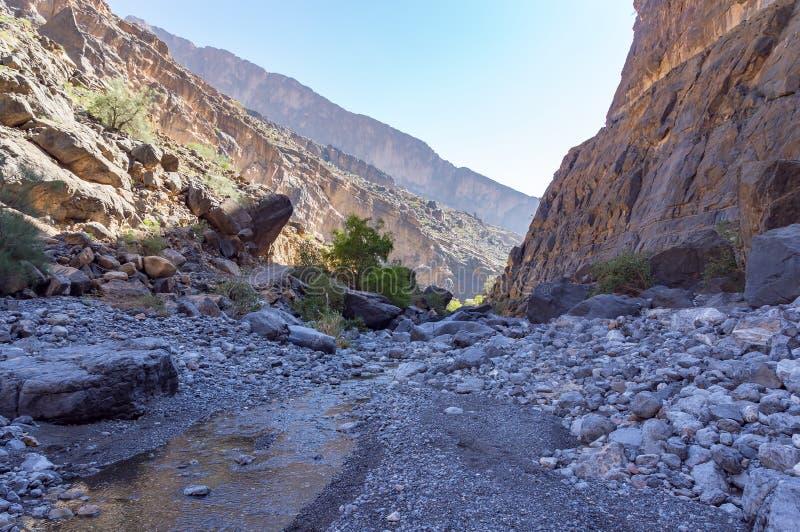 Nakhr Wadi - l'Oman photos libres de droits