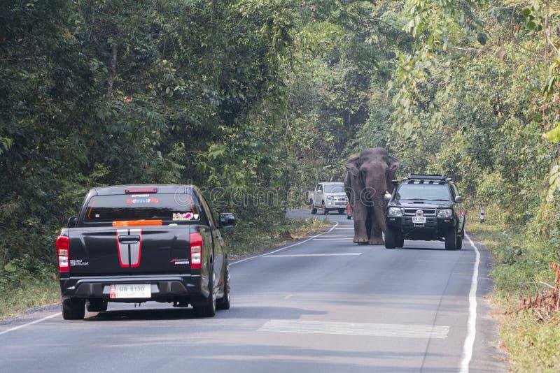 Nakornratchasima, Tailândia - 20 de fevereiro de 2016: Guardas florestais de parque Aut imagens de stock