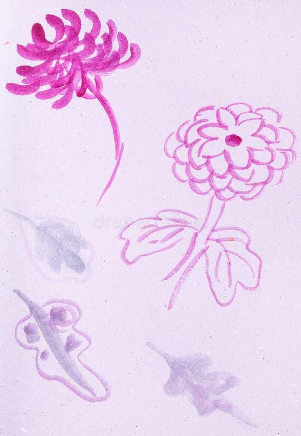 Nakreślenia chryzantema kwiaty royalty ilustracja