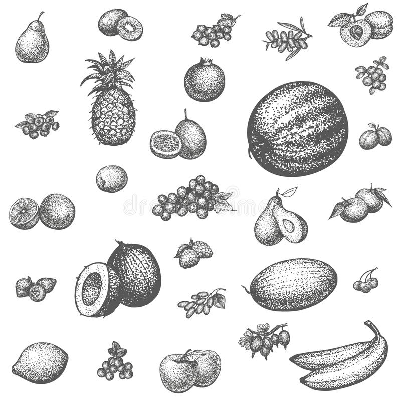 Nakreślenia doodle pociągany ręcznie ustalona owoc royalty ilustracja