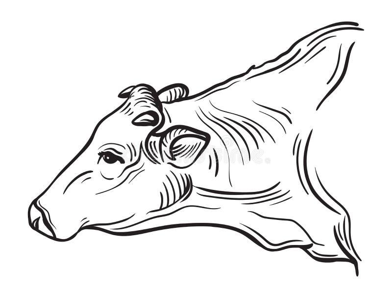 Nakreślenia krowy rysować ręką ilustracji