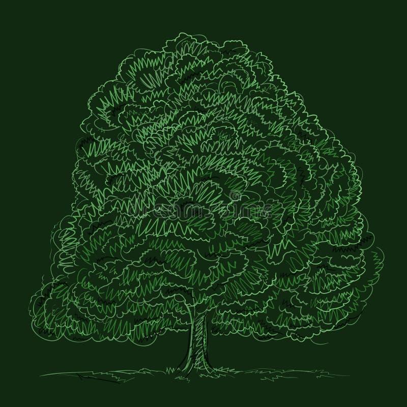 nakreślenia lato drzewo ilustracji
