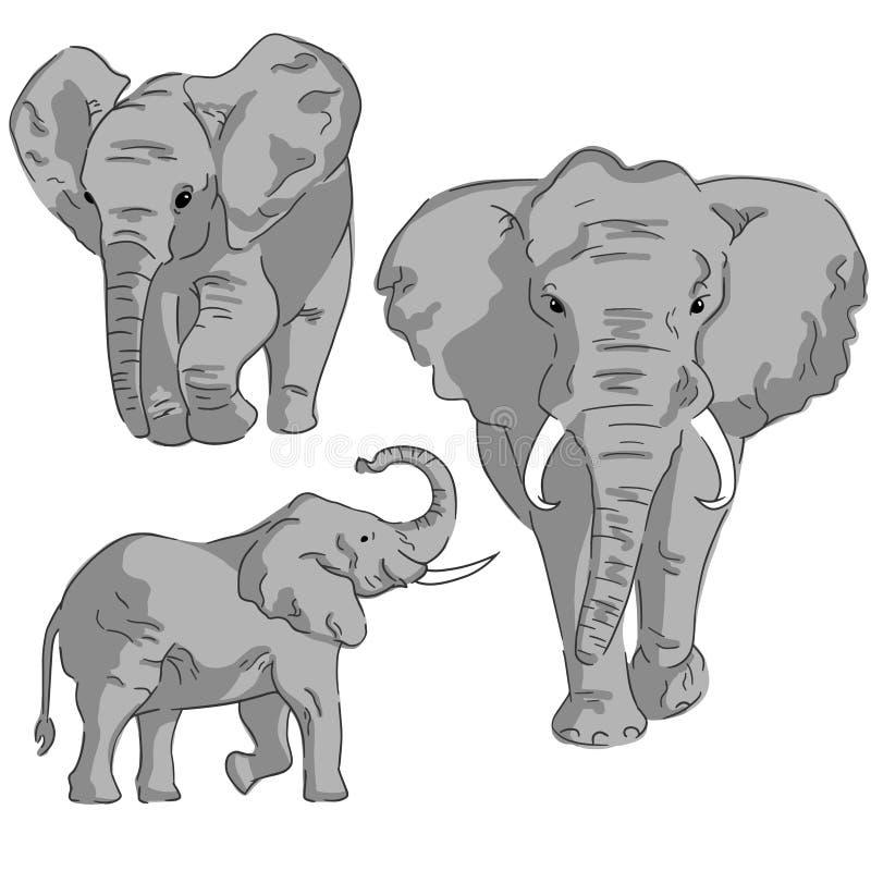 Nakreślenia słoń na białym tle Set w kolorów słonie ilustracja wektor