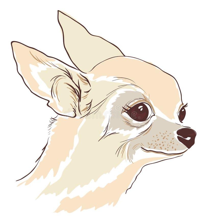 Download Nakreślenie śliczny Chihuahua Hua Pies Ilustracja Wektor - Ilustracja złożonej z niezrównoważenie, cukierki: 28971643
