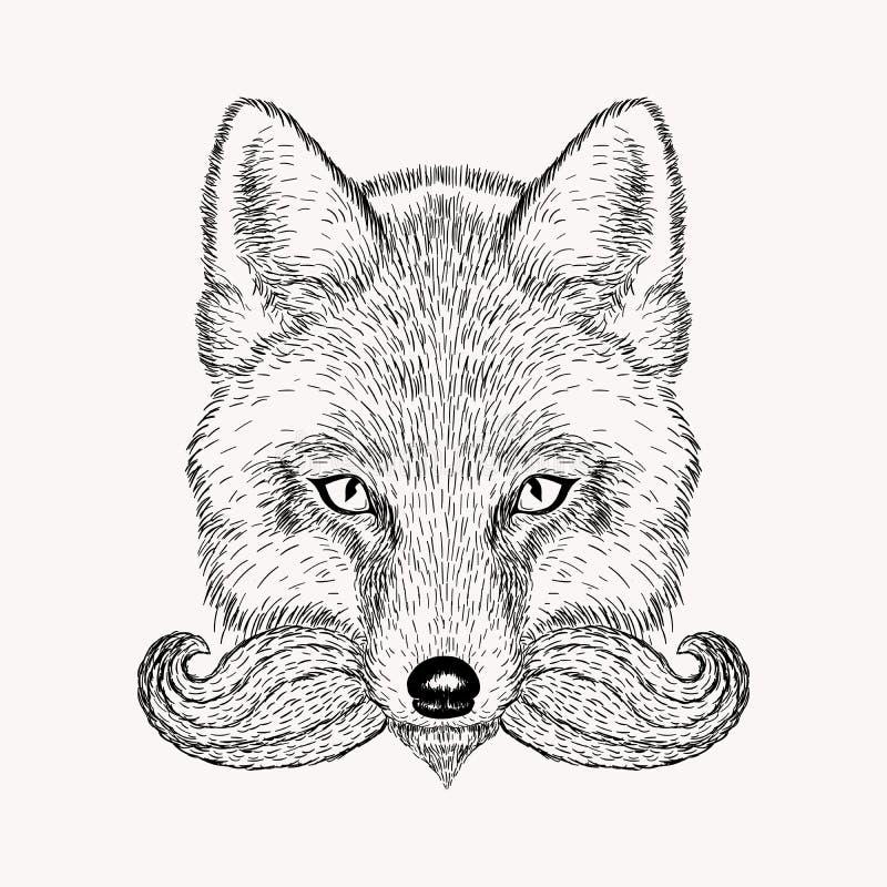 Nakreślenie lis z wąsem i brodą ilustracja wektor